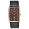 SKAGEN DENMARK® Men's Brown Strap Watch