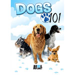 DVD REWARDS Dogs 101