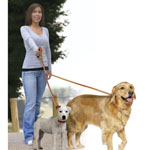 Jobar International® Dual Pet Leash